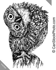 black and white engrave isolated owl vector illustration -...