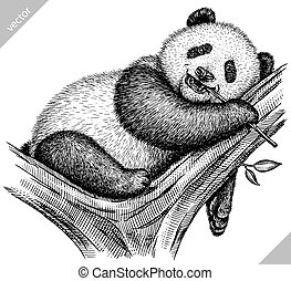black and white engrave isolated panda vector art