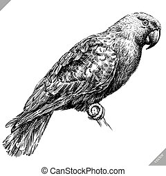black and white engrave isolated parrot vector illustration...