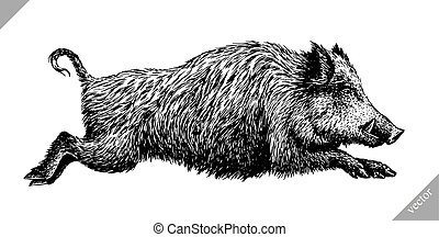 black and white engrave isolated pig vector illustration -...