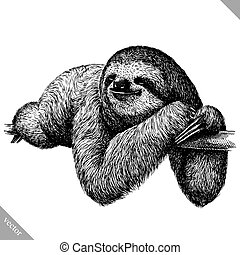 black and white engrave isolated sloth vector art
