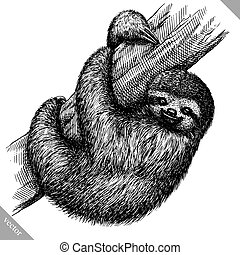 black and white engrave isolated sloth vector illustration -...