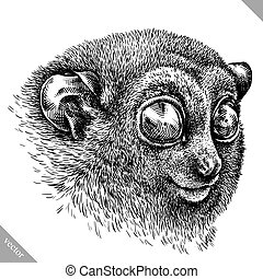 black and white engrave isolated tarsier vector illustration...