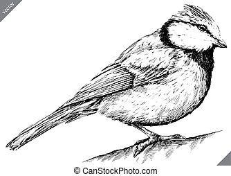 black and white engrave isolated tit vector illustration -...