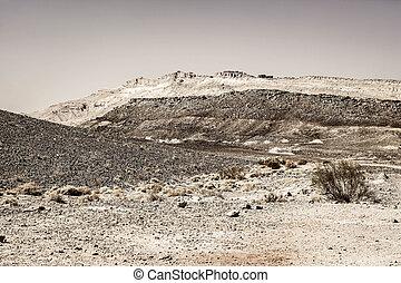 Black and white fantasies of the desert