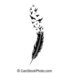 Black-and-white feather on white backround, vector...