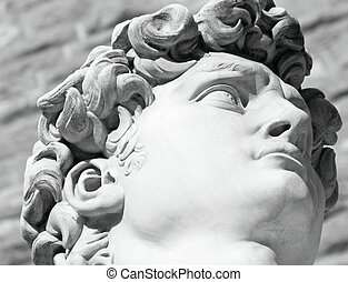 David by Michelangelo - black and white head of famous ...