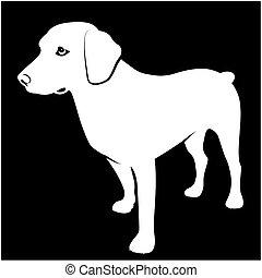 Black and white Illustration of hunting dog on dark background