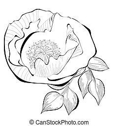 Black and white illustration of stylized flower