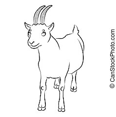 black and white image of a goat