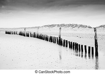 Black and white image of beach at low tide with wooden posts landscape