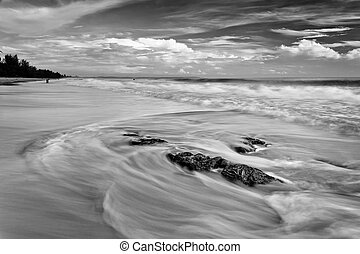 Black and white image of waves