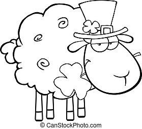 Black And White Irish Sheep