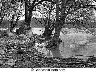 black and white lakeside scenery at S