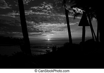 Black and white Landscape Big Island Hawaii with a tiki tourch in foreground