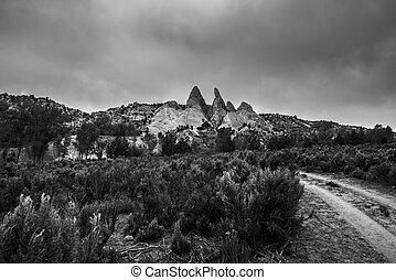 Black and White Landscape Utah Cottonwood Canyon Road