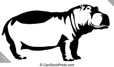 black and white linear paint draw Hippo vector illustration...