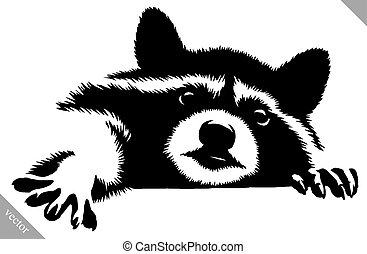 black and white linear draw raccoon vector illustration