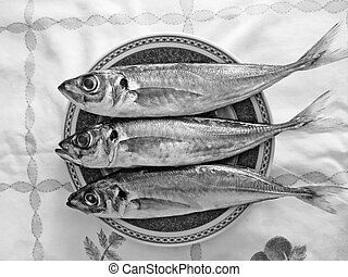 Black and white mackerel