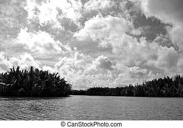 Black and White Panoramic River - Black and white silhouette...