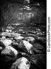 Black and white image of a a small, rushing brook flows around large boulders in the forest.