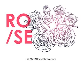 Black and white rose with an inscription Rose