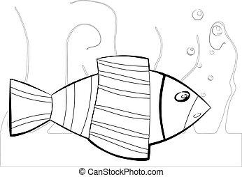 black and white sea fish