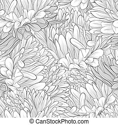 black and white seamless background with flowers aster -...