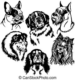 set with dogs heads of difference breeds , black and white isolated images