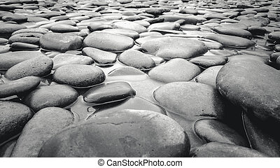 Black and white shot of river bed with pebbles