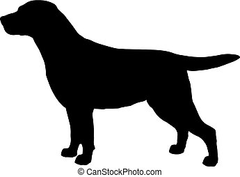 Black and white silhouette of dog labrador. Illustration of...