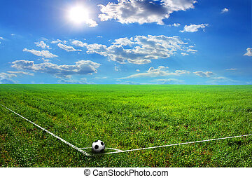 black and white soccer ball on the field