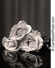 Black and White three Rose and reflection