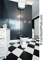 Black and white toilet interior