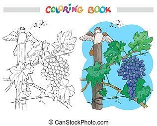 Black and White Vector Cartoon Illustration of Bunch of Grapes with bird for Coloring Book
