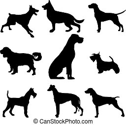 Black and white silhouette of a dog. Pointer or Pinscher. On the hunt