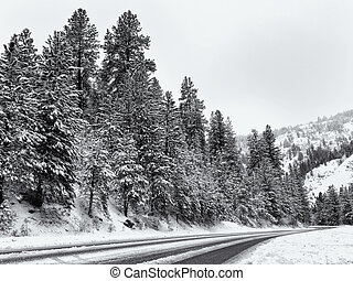 Black and white winter road in the mountains