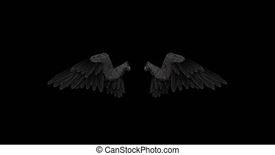 Black angel wings with an alpha channel 4K