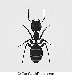 Black ant , eps10 vector format