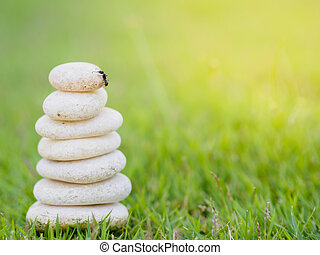 Black ant on top of Balance Stones stacked to pyramid in the soft green background to Spa ideas design or freedom and stability concept on rocks.