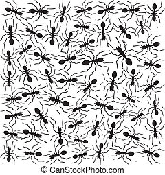 black ants background (pattern with ants)