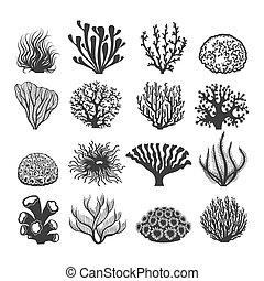 Black aquatic corals set