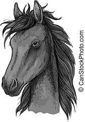 Black arabian horse head sketch