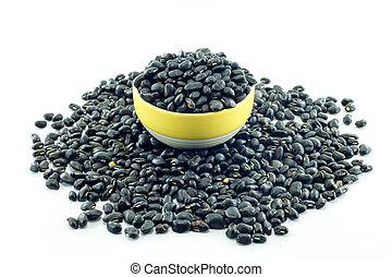Black bean isolated on white background