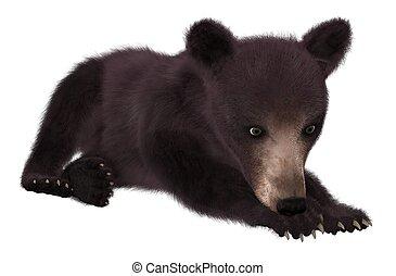 Black bear cub isolated on white background 3d illustration