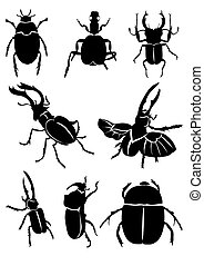 black beetles - Vector illustration of black beetles on...
