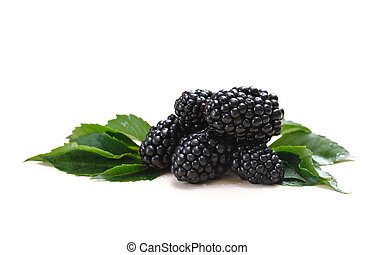 Black Berry and green leaves on a white background place for text