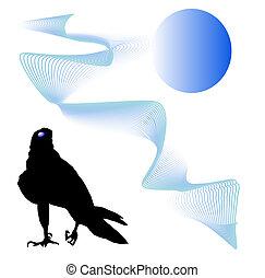 Black bird predator aggressive hawk