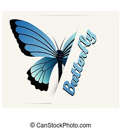 Black Blue Butterfly White Background Vector Image