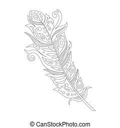 black bohemian boho bird feather, isolated on white...